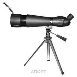 Sturman 20-60x60