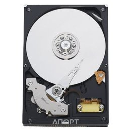 Western Digital WD2500JB