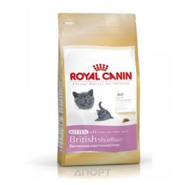 Royal Canin British Shorthair Kitten 10 кг