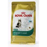 Фото Royal Canin Maine Coon Kitten 4 кг