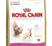 Фото Royal Canin Sphynx 33 Adult 2 кг