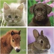 Фото Ravensburger Дети животных (07265)